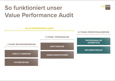 So funktioniert unser Value Performance Audit