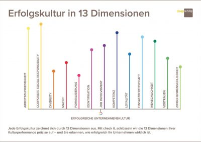Erfolgskultur in 13 Dimensionen
